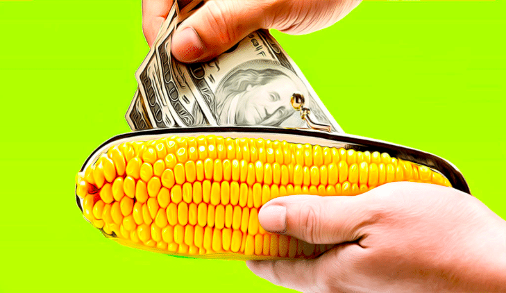 Как вывести деньги с карты «Кукуруза» через банкомат
